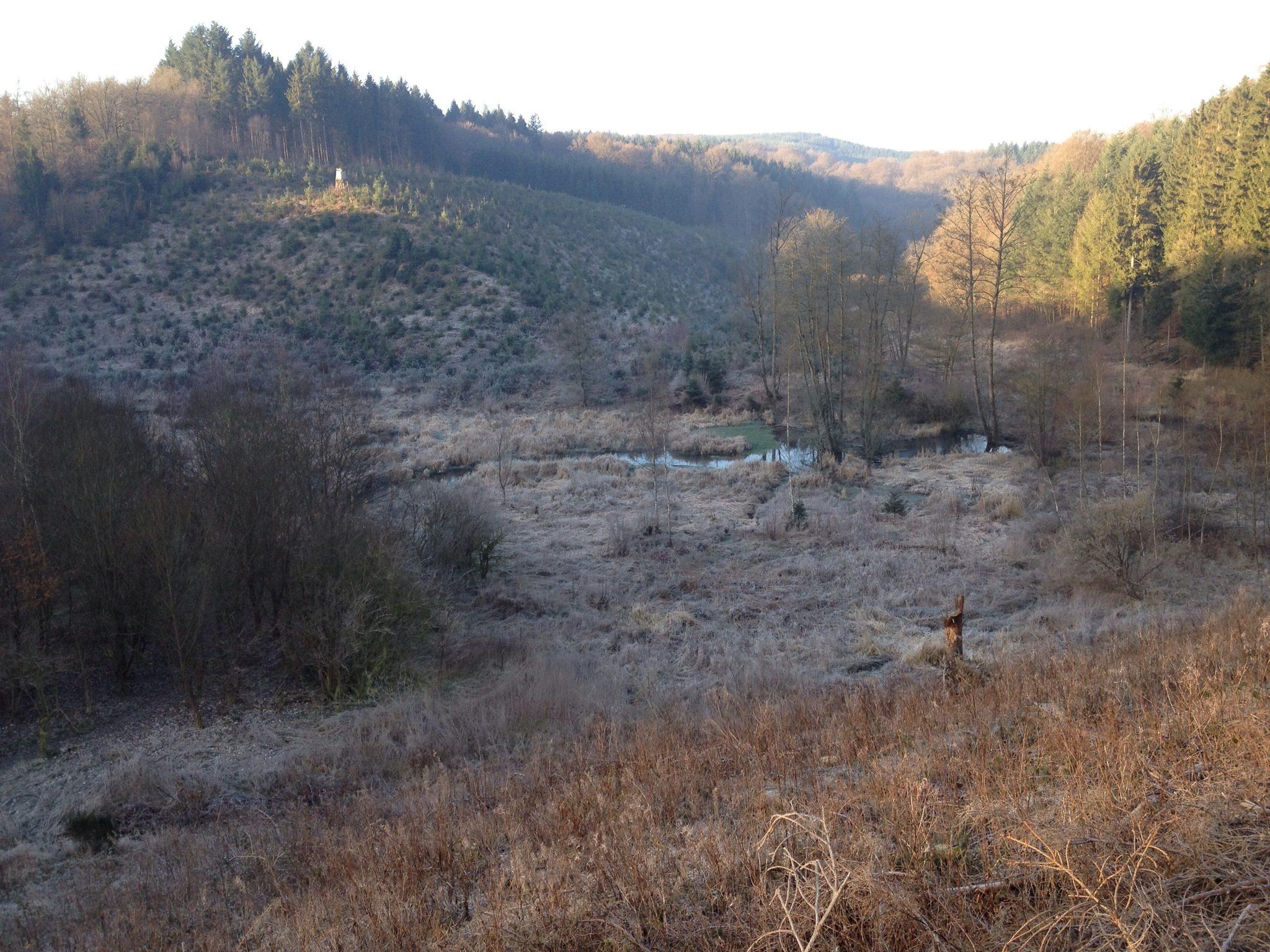 Ardennen 2014 - 3