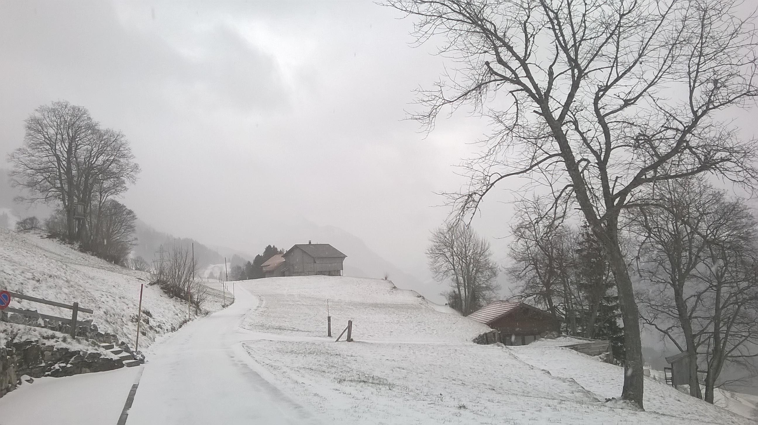 Zwitserland - Hasliberg - 2